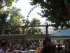 Budapest WAMP Market & Budapest Sziget Eye