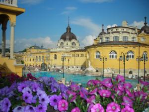 Szechenyi Bath Budapest Things to Do