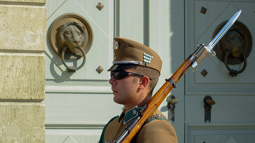 Buda Castle Guard One Day Budapest Hungary